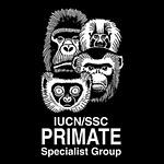 primate-sg-web_600x350